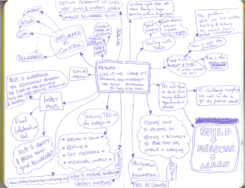 "My notes from ""Live It Or Leave It - Returning Your Investment Into Agile"""